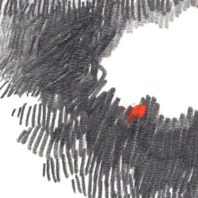 OS---Antonio---Detail-1