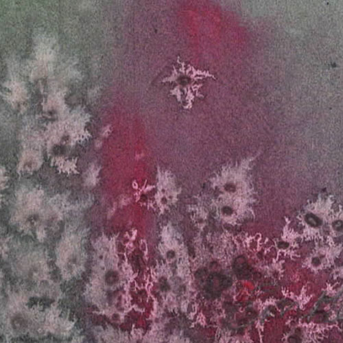 OS---Kassiani---Detail-2