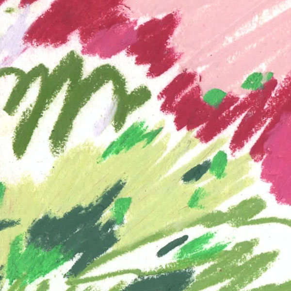 OS---Stegosaurus-Nights---Detail-1